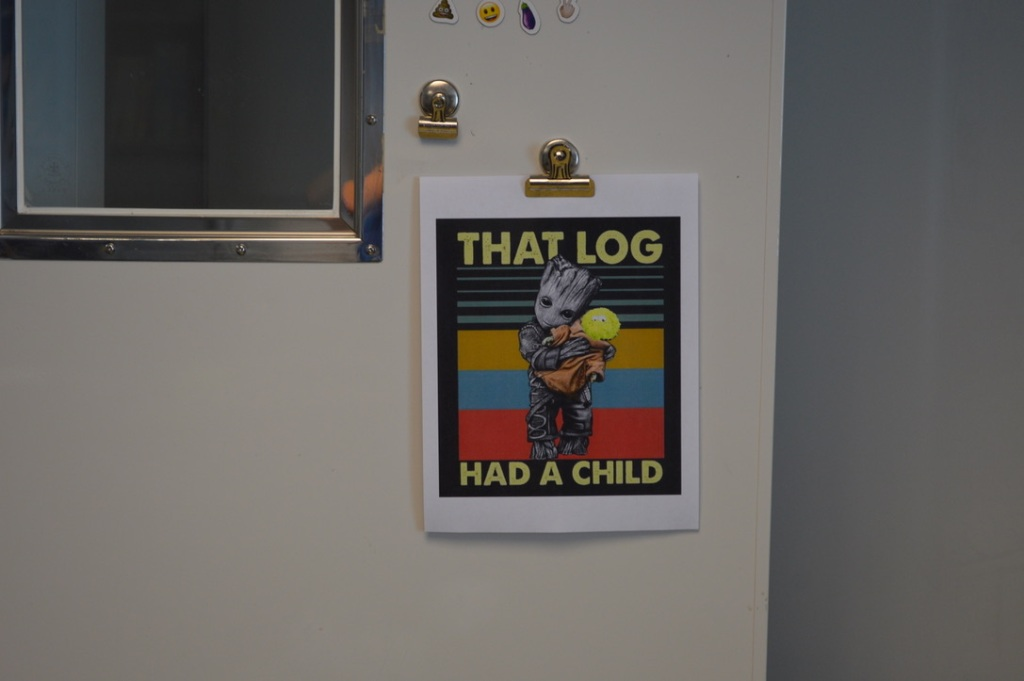 A photo of a poster. The poster is Groot holding baby Yoda, but Little Cthulhu, a fuzzy green plush, has been photoshopped over baby Yoda's face. The poster says 'THAT LOG HAD A CHILD.'